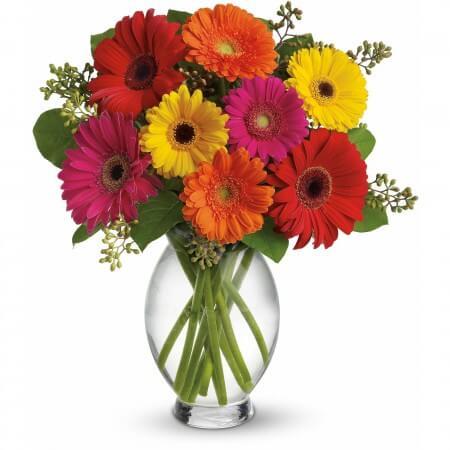 Flores ideais para decorar sua casa na primavera